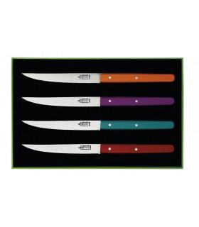 G.David 2414 Coffret 4 couteaux table G. DAVID « Néo », 23 cm, inox, manche bois coloris assortis